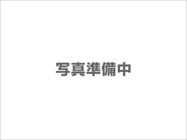 アルファード(トヨタ) S Aパッケージ未使用車 アルパインBIGX 中古車画像